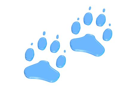 animal paw prints: animal paw prints, 3D rendering isolated on white background Stock Photo