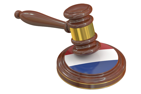 the hague: Wooden Gavel with Netherlands, 3D rendering