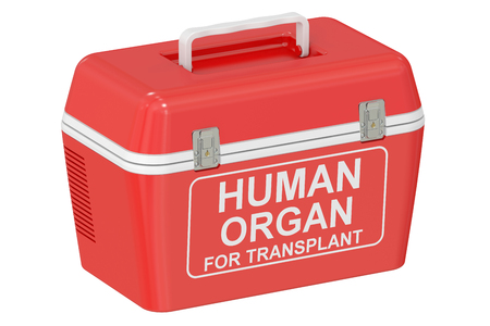 transporting: Portable fridge for transporting donor organs, 3D rendering isolated on white background