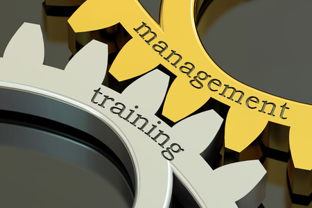 management training: Management Training concept on the gearwheels, 3D rendering