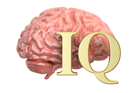 Human brain and IQ word, 3D rendering Stock Photo