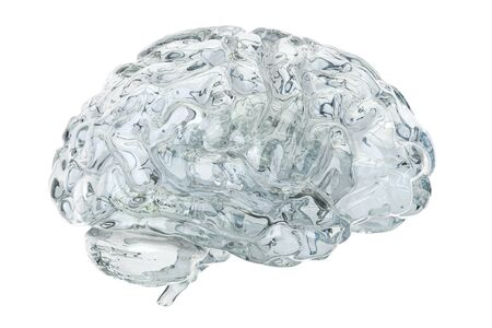 Glass transparent brain, 3D rendering isolated on white background
