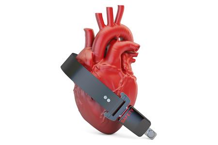 cinturon seguridad: Human heart with safety belt,  health insurance concept. 3D rendering