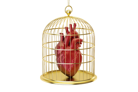 prisoner of love: Birdcage with human heart, 3D rendering isolated on white background