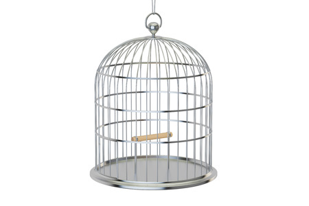 gaol: Steel bird cage with closed door, 3D rendering isolated on white background Stock Photo