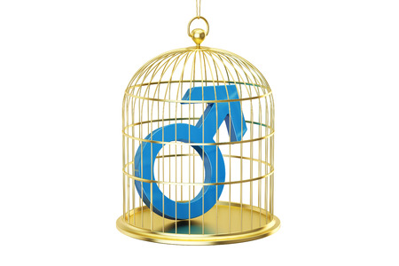 Birdcage with male gender symbol, 3D rendering isolated on white background