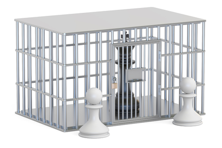 gaol: Cage, prison cell with chess king. 3D rendering