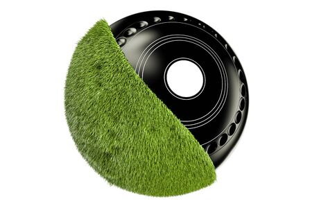 Grassy Lawn Bowl concept, 3D rendering