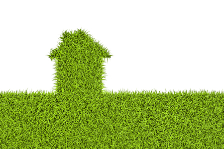 Ecological house concept, green grass home. 3D rendering isolated on white background Stock Photo