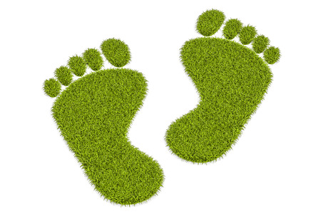 Grass human footprints, 3D rendering isolated on white background