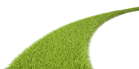 Green Grassy Way, 3D rendering isolated on white background