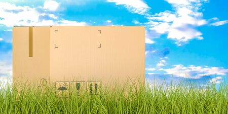 Shipping and delivery concept, parcel on grass. 3D rendering