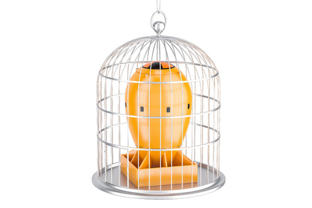 Bird cage with nuclear bomb. Nuclear weapons prohibition concept, 3D rendering isolated on white background