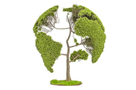 Tree in the shape of Earth Globe, environment concept. 3D rendering isolated on white background