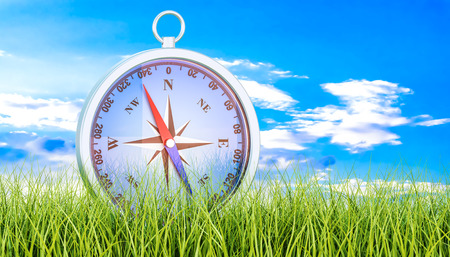 Magnetic compass in green grass, 3d rendering