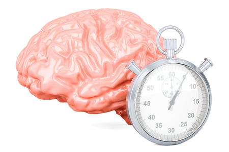 Human brain with stopwatch, 3D rendering isolated on white background