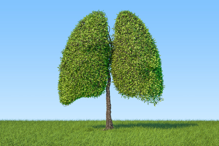 Eco concept. Tree in the shape of lungs on the green grass against blue sky, 3D rendering  Stockfoto