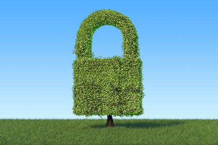 Green tree shaped as padlock on the green grass against blue sky, 3D rendering  Reklamní fotografie