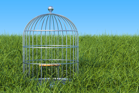 Bird cage in the green grass against blue sky, 3D rendering