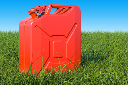 Jerrycan in the green grass against blue sky, 3D rendering