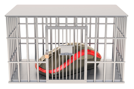 Computer mouse inside cage, prison cell. 3D rendering isolated on white background Stock Photo