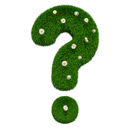 Grass question mark with flowers, 3D rendering isolated on white background 版權商用圖片