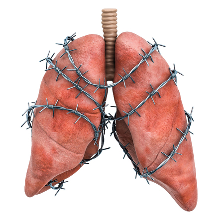 Lungs Pain concept. Human lungs with barbed wire. 3D rendering isolated on white background