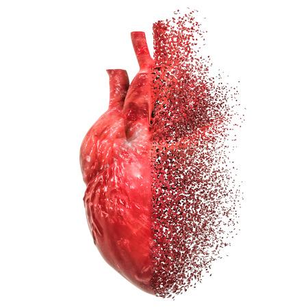 Concetto di malattia cardiaca. Rendering 3D isolato su sfondo bianco Archivio Fotografico