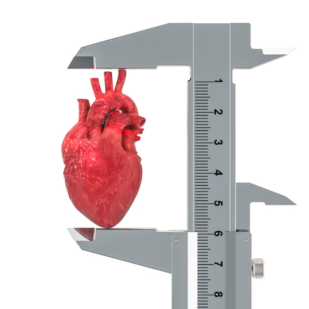Human heart with vernier caliper. Research and diagnosis of heart concept, 3D rendering isolated on white background