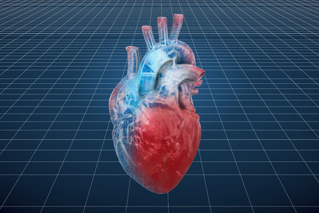 Visualization 3d cad model of human heart, 3D rendering