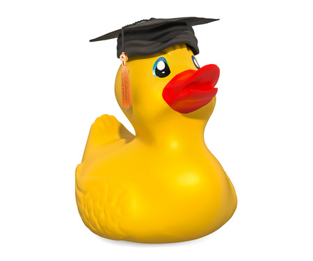 Graduation Rubber Duck, 3D rendering isolated on white background Standard-Bild - 116655484