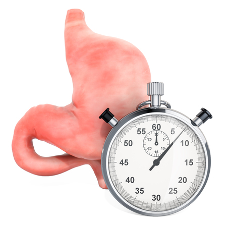 Human stomach with stopwatch. First aid and treatment of stomach concept, 3D rendering isolated on white background Imagens