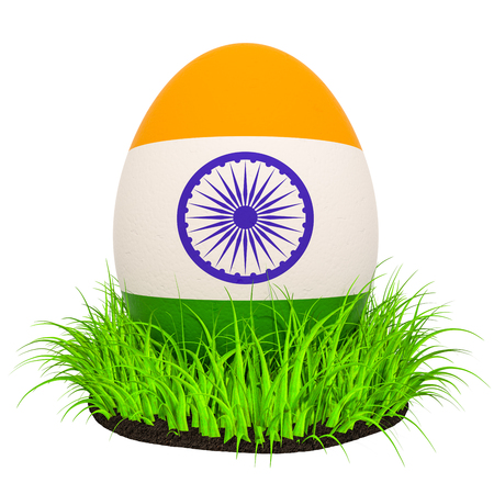 Easter egg with flag of India in the green grass, 3D rendering isolated on white background Stock Photo