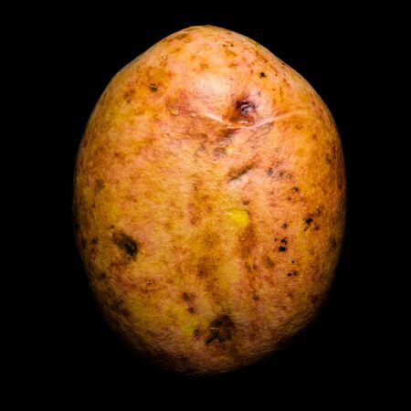 Potato 3d rendering with realistic texture isolated on black background Imagens