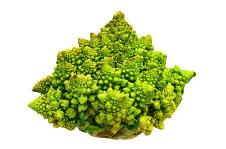 Romanesco broccoli close-up 3d rendering with realistic texture isolated on white background