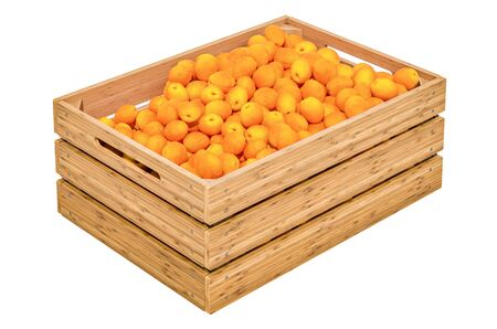 Apricots in the wooden crate, 3D rendering isolated on white background
