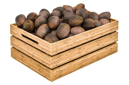 Avocado in the wooden crate, 3D rendering isolated on white background