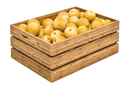 Chinese pears Nashi in the wooden crate, 3D rendering isolated on white background