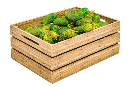 Cucumbers in the wooden crate, 3D rendering isolated on white background