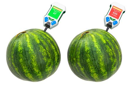 Nitrate testers with watermelons. Measurement of nitrate levels in watermelons, normal range and higher than norm. 3D rendering isolated on white background