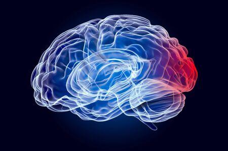 Brain, disease of occipital lobe concept. 3D rendering
