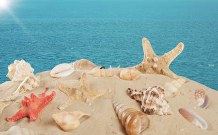 Starfish and seashells on the sandy beach on sea background photo