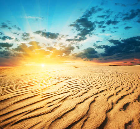 Red sunset in a desert with dunes Standard-Bild