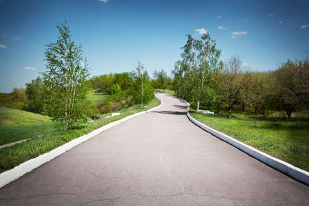 dividing lines: Landscape with an asphalt track in a park under the blue sky Stock Photo