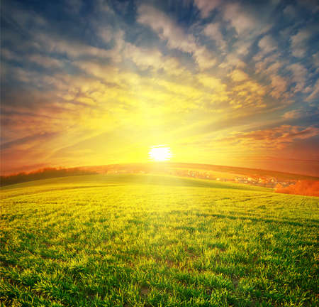 Meadow with green grass under sunset dramatic sky photo