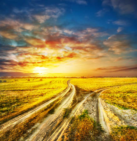 divergent: Two divergent sandy road in a field under a dramatic sky Stock Photo
