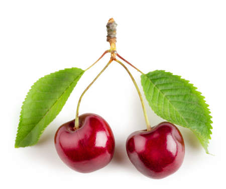 Bright cherry fruit with green leaves isolated on white