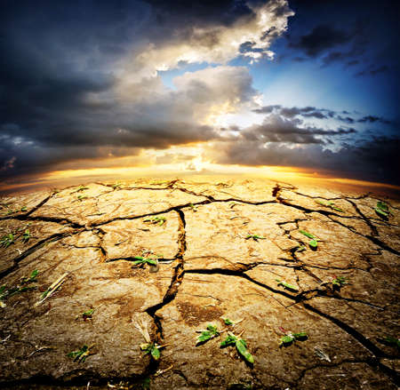 natural disaster: Dried desert land with sprouts under dramatic sky Stock Photo