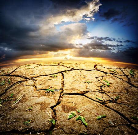 luz natural: Tierra del desierto secas con brotes bajo el cielo dram�tico Foto de archivo