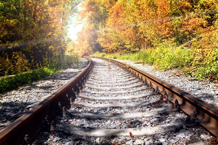 forest railroad: Rusty railroad in autumn forest stretches to the sun Stock Photo